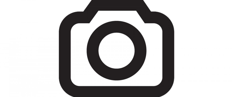 https://aztsmeuqao.cloudimg.io/crop/1440x600/n/https://objectstore.true.nl/webstores:wealer-nl/07/homepagebanner-wealer-carnaval-2020.jpg?v=1-0